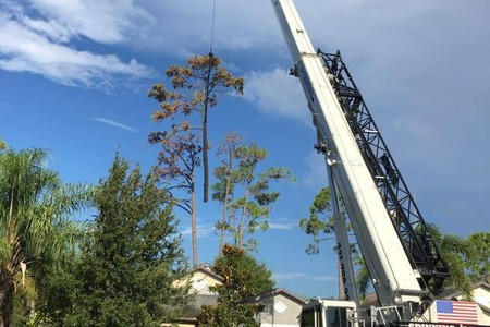 Crane Removals - Superior Tree Service
