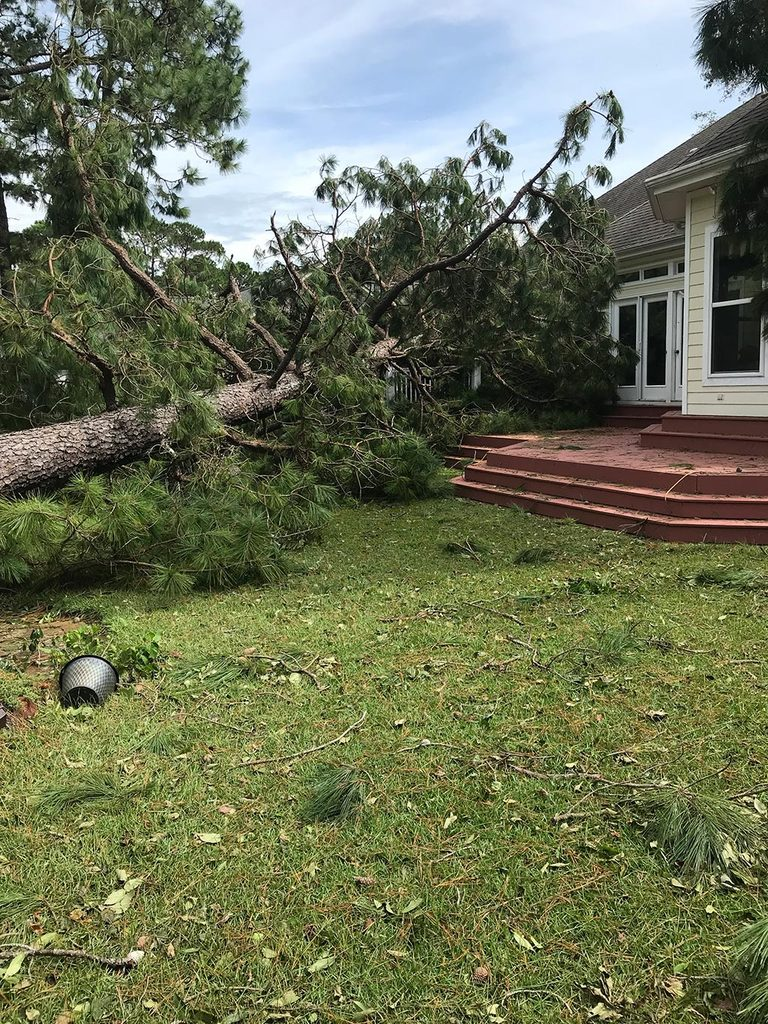large tree fallen onto a roof and patio of one story home