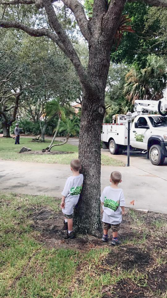 Superior Tree Services